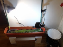 """The Urban Garden - Adventures in Automated Indoor Gardening"""